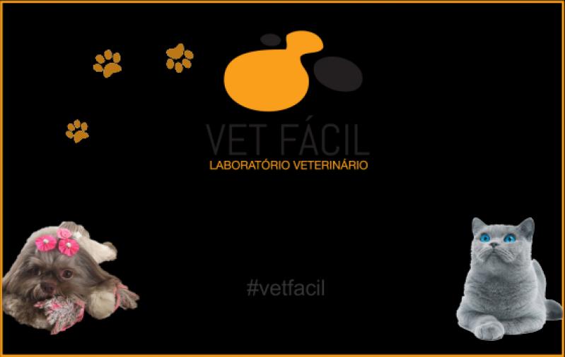 Exame Laboratorial Cães e Gatos Aricanduva - Exames Laboratoriais para Veterinário