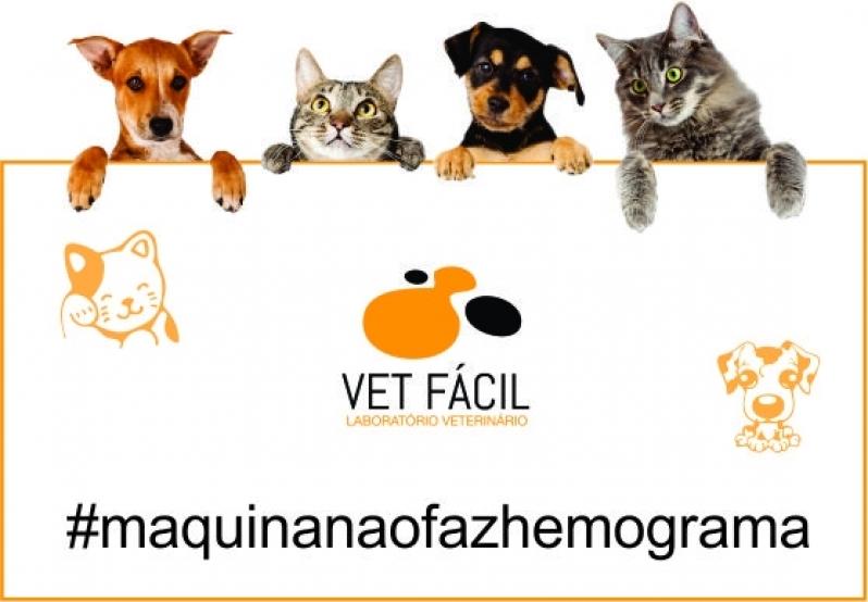 Exames Laboratoriais para Hemograma Preço Santana - Laboratório de Analises Clinicas Veterinárias