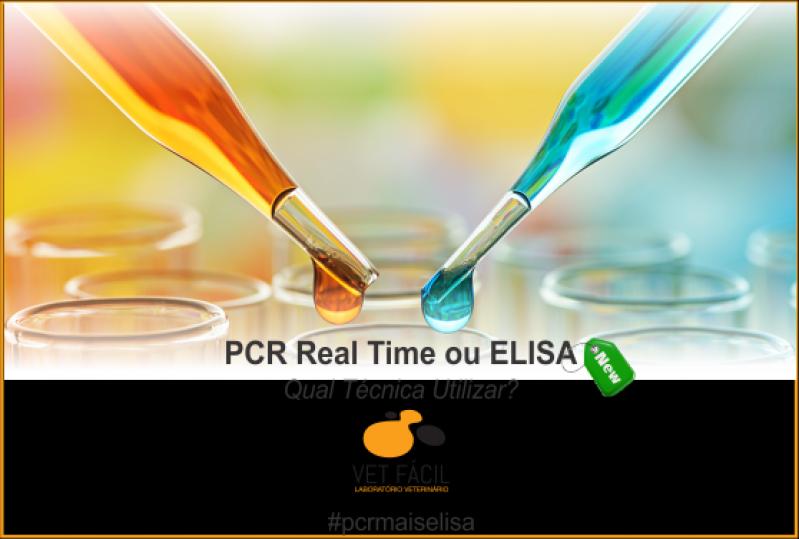 Onde Encontrar Exames Laboratoriais Exames Grajau - Exames Laboratoriais para Veterinário