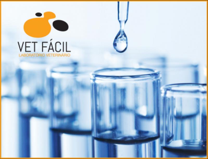 Quanto Custa Exames Laboratoriais Hematológico Embu das Artes - Laboratório Veterinário