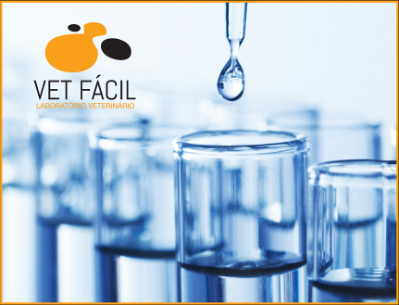 Quanto Custa Exames Laboratoriais Hematológico Lapa - Exames Laboratoriais para Cachorro