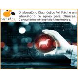 exame bioquímico veterinário preço São Domingos