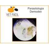 exame coproparasitológico veterinário preço Capão Redondo
