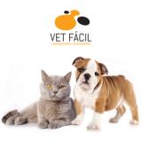 exame hematológico veterinário Vila Esperança