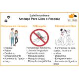 exame leptospirose cães Parque São Rafael