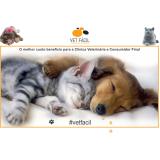 exame leptospirose gato preço Água Rasa