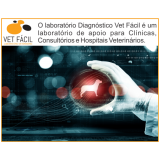 exames bioquímico cachorro José Bonifácio