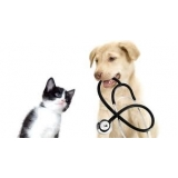 exames laboratoriais cães e gatos preço Vila Curuçá