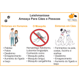 exames laboratoriais para veterinário Vila Carrão