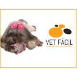 laboratório veterinário para cães Vila Esperança