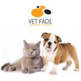 laboratório veterinário para gatos Jardim América