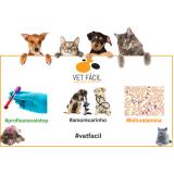laboratório veterinário para animais