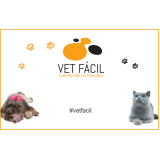laboratórios veterinário para gatos Itatiba