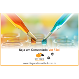 preço de exame bioquímico cachorro Vila Prudente