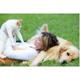quanto custa exames laboratoriais para gatos Alto de Pinheiros